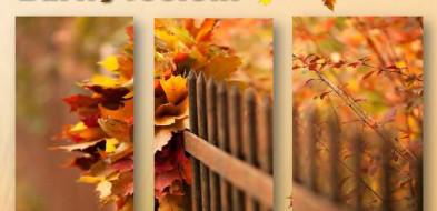 XV Węgrowskie Barwy Jesieni przed nami-30589